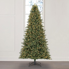 9 Pcs – Member's Mark TG90P5433L01 9′ Grand Spruce Christmas Tree – New – Retail Ready