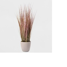 CLEARANCE! 220 Pcs -4' Potted Grass - Lloyd & Hannah - New - Retail ready - Lloyd & Hannah