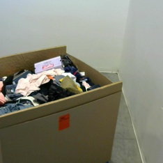 Pallet – 443 Pcs – Shirts & Blouses, Unsorted, T-Shirts, Polos, Sweaters, Girls – Customer Returns – Fruit of the Loom