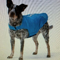 6 Pcs – Free Country Dog Down Coat Small Teal/Silver – New – Retail Ready