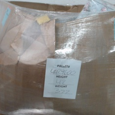 Pallet - 465 Pcs - Underwear & Socks, Girls, Shirts & Blouses, Underwear, Intimates, Sleepwear & Socks - Customer Returns - A New Day, Cat & Jack, Universal Thread, C9 Champion