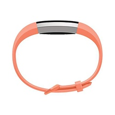 CLEARANCE! 9 Pcs – Fitbit Activity & Sleep Trackers – Refurbished (GRADE A, No USB Cable) – Models: FB408SCRS
